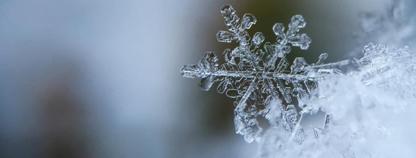 Mouvement des saisons: l'hiver