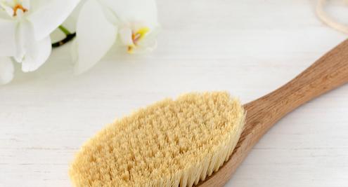 Boîte à outils: La brosse végétale